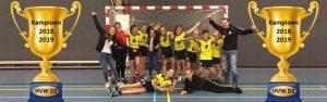 Huldiging D2 kampioenen @ Sporthal de Hoepel