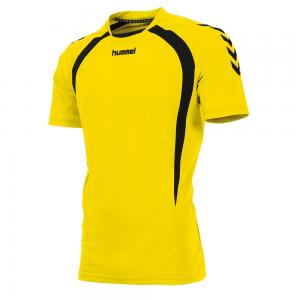 160105-4800 Team shirt geel
